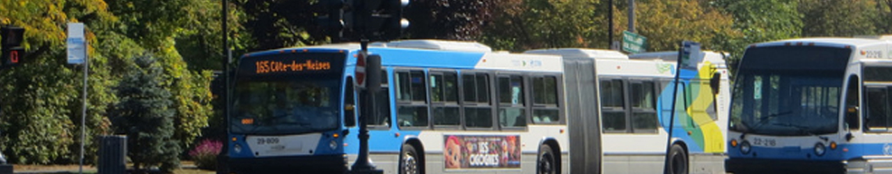 Bandeau - Résultats du sondage sur les habitudes de transport